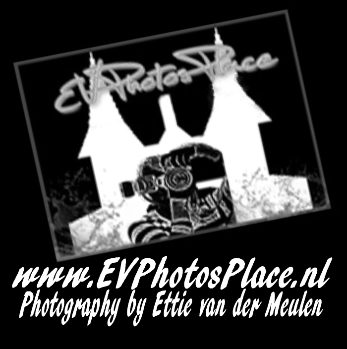 © EVPhotosPlace